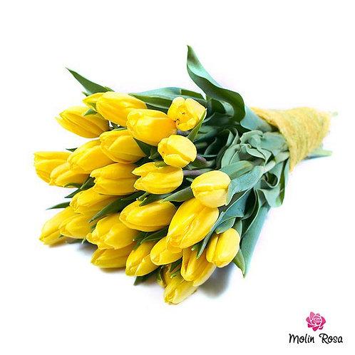 Yellow Tulips | Tulipani Gialli, Consegna fiori a domicilio