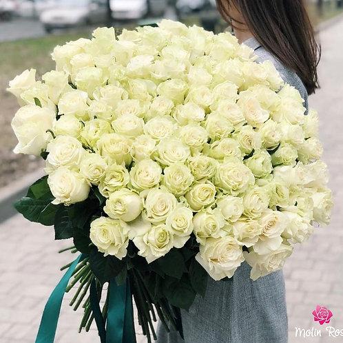 Mazzo di Rosa Bianca XXL 60 pz. | White Rose Bouquet XXL 60 pcs.