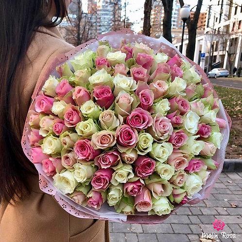 Pink White Rose 60 pz.