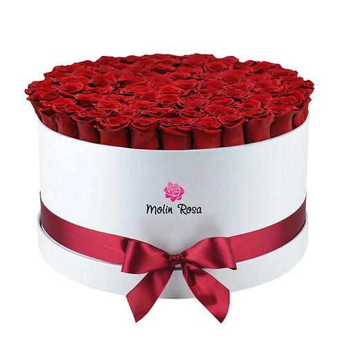 Rose Stabilizzate LUX 50 pz. | Stabilized Roses LUX 50 pcs. | Consegna Fiori