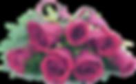consegna fiori milano