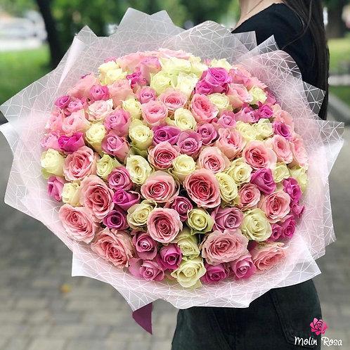 Rosa Bianco Rossa 60 pz.
