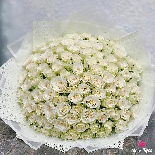 White Rose Lux 70 pz