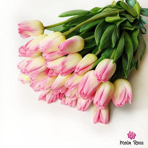 Pink Tulips | Tulipani Rosa, Consegna fiori a domicilio