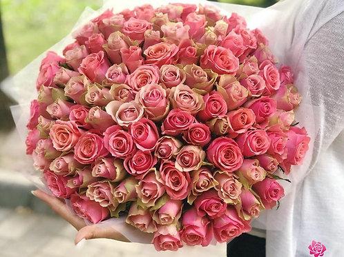 Belle Rosa 60 pz.