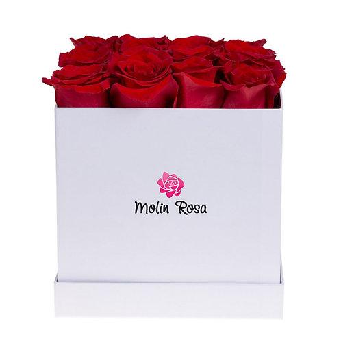 Rose stabilizzate Box Rosse | Stabilized roses Box Red | Consegna tutta Italia