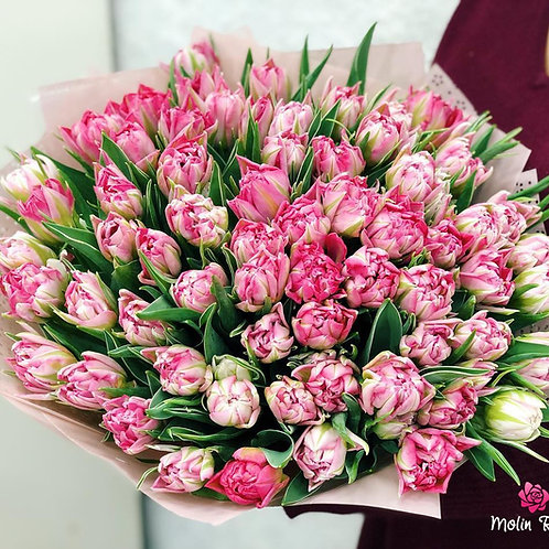 Tulipani Striati Rosa | Pink striped Tulips, Send Flowers to Milan