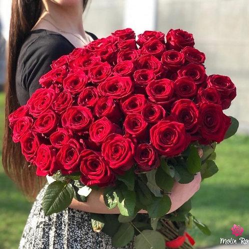 Rose Red Naomi XXL | Roses Red Naomi XXL | Rose Rosse Online