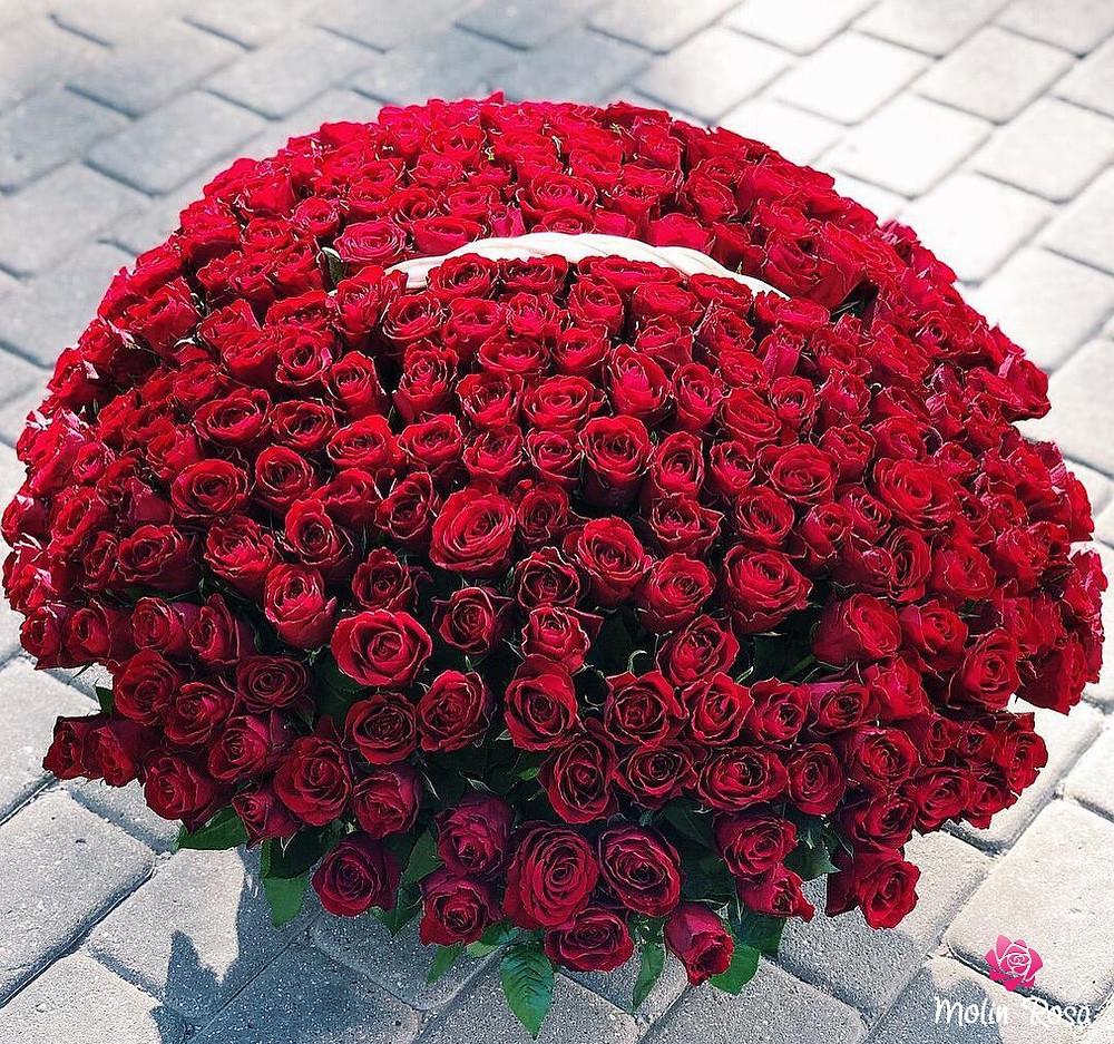 Fiori Milano - Consegna fiori a Milano