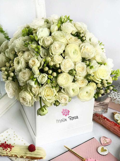 Box 4, 40/50 White Rose