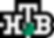 NTV_logo.svg.png