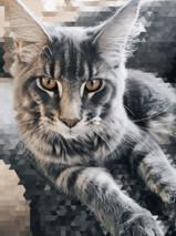 MADISON OF MOONLIGHT LION