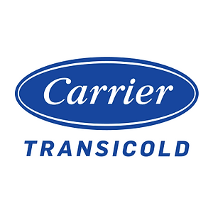 Carrier 300.png