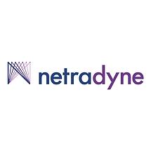 Netradyne in Frame.png