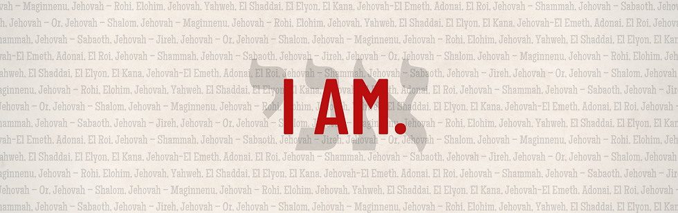 I AM Series web banner (1).png