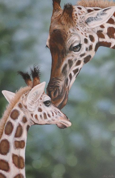 Giraffe art  Fiona Groom