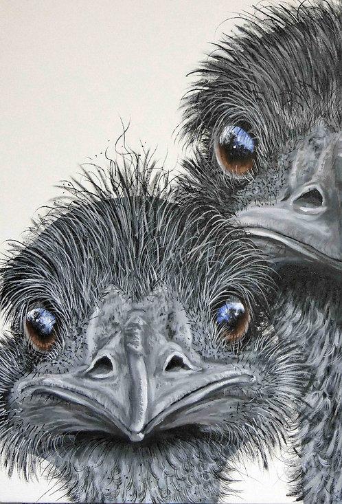 Two Emus Greeting Card