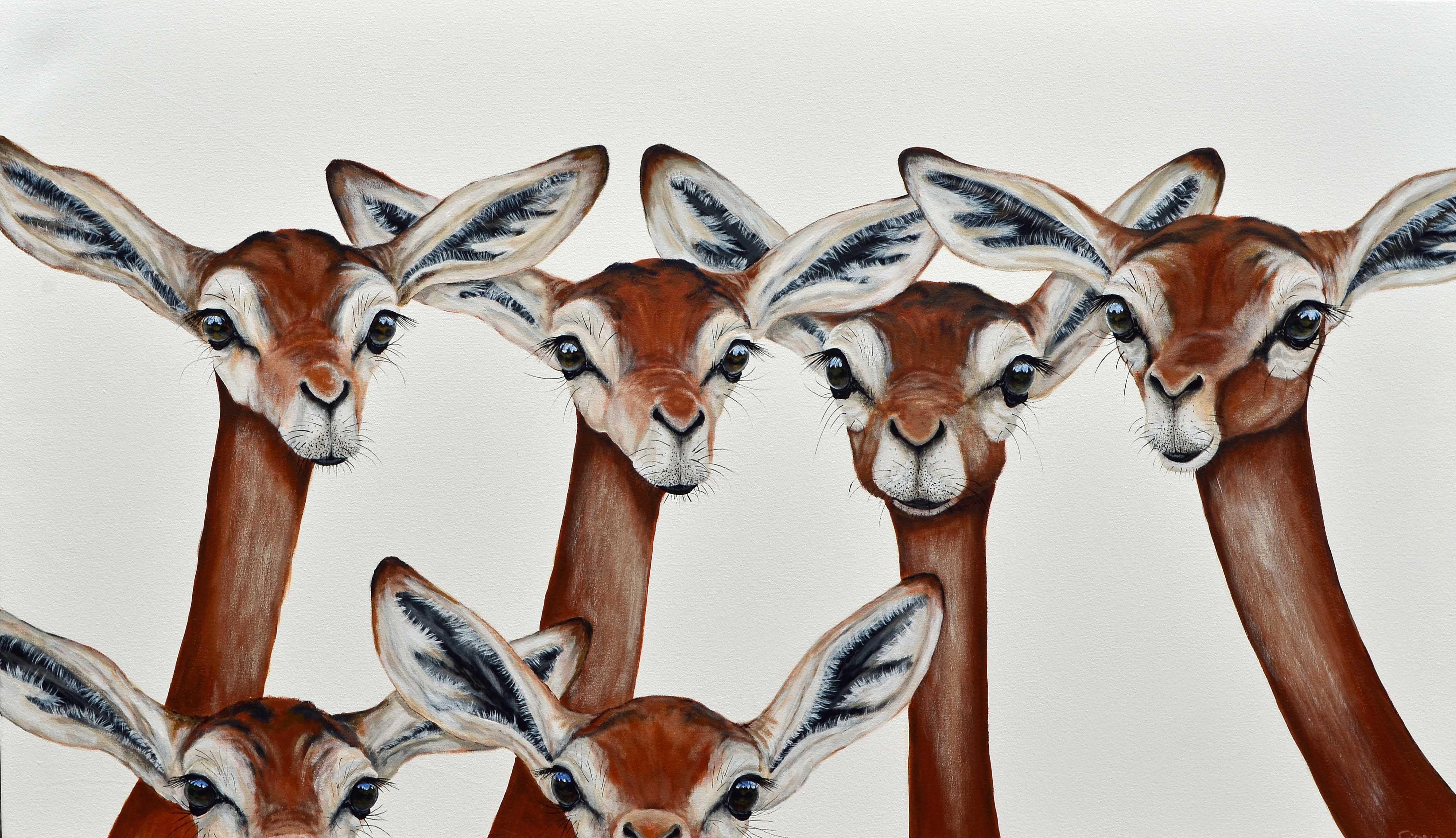 gerenuk gathering