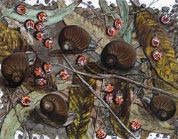 the jitter bugs