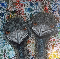 its an emu thing