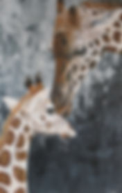Giraffeart_fionagroom_animalart.jpg