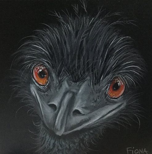 hi i'm an emu