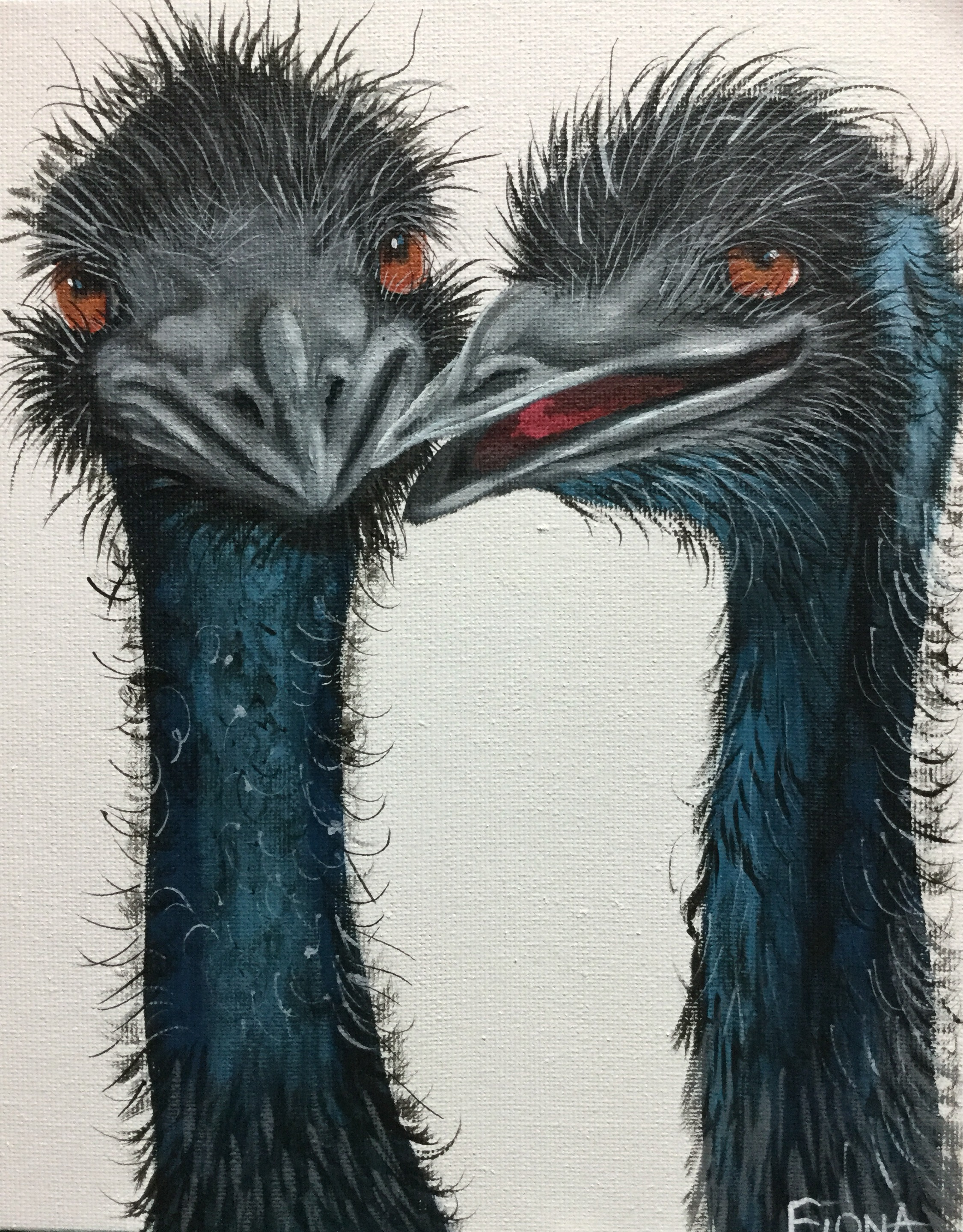 the emus