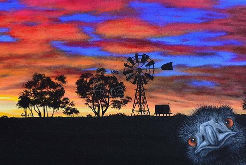 Emu Sunset Greeting Card