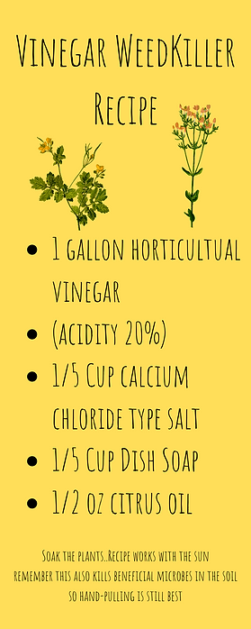 Vinega WeedKiller Recipe.png
