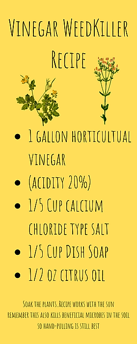 Vinega WeedKiller Recipe.png
