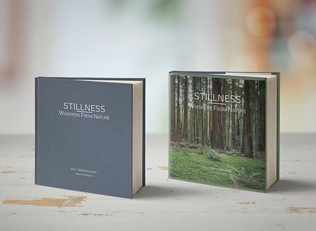 Stillness - Artist Edition