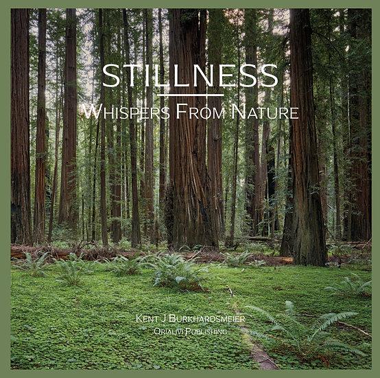 Stillness (Artist's Edition)