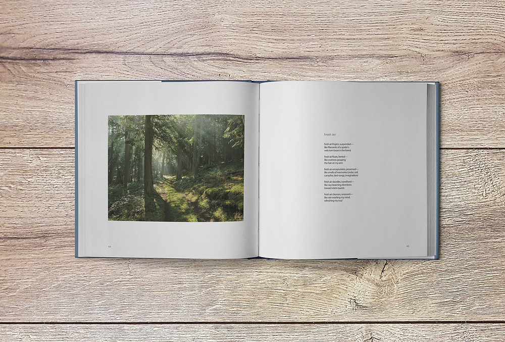 Retreat from the chaos of everyday by meditating with poetry and landscape photography