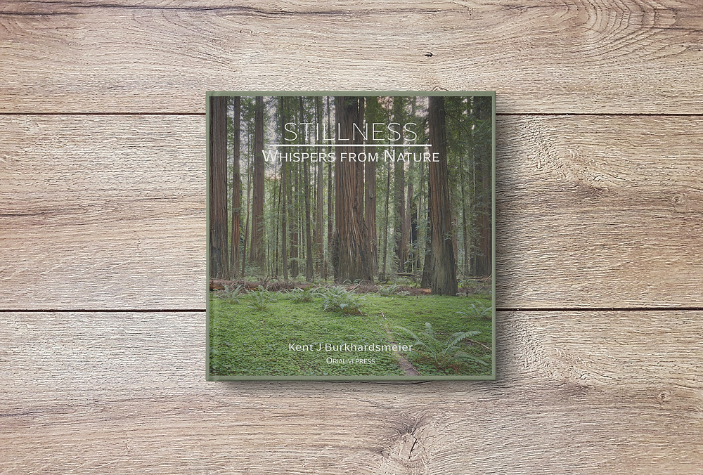 Photo Wrapped Hardcover Edition laying on wood table