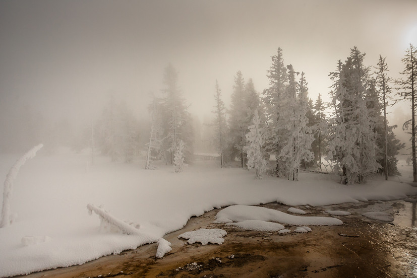 madison river cloaked in snow and fog
