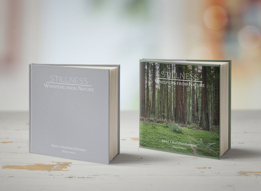 Limited Edition Book version available - signed, numbered, and stamped.  Only 100 copies sold.