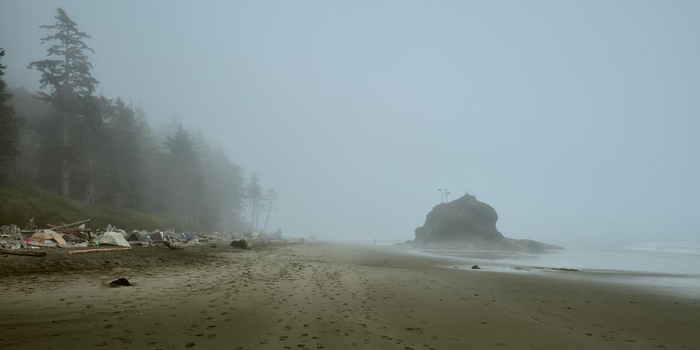 tracks into mist