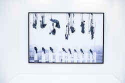 20191005_Gallery-14