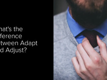Adapt versus Adjust