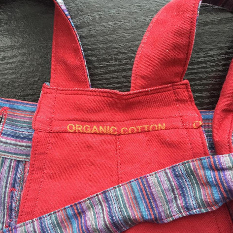 Jane's Dungarees Front