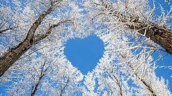 coeur hiver.jpg