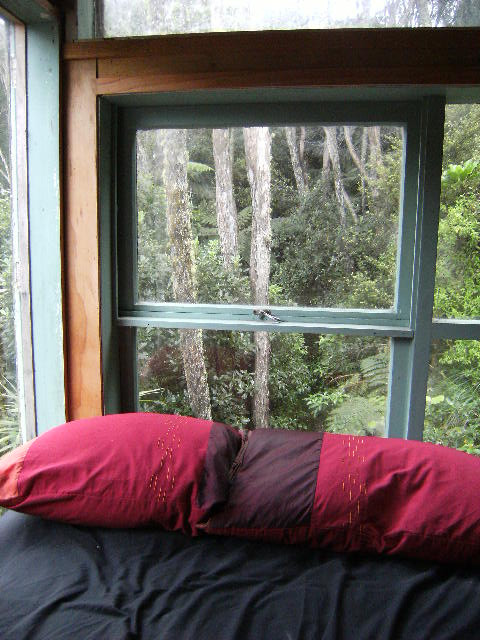 The view from my bed at the time. I would wake up with birdsong and the gentle swaying of trees.