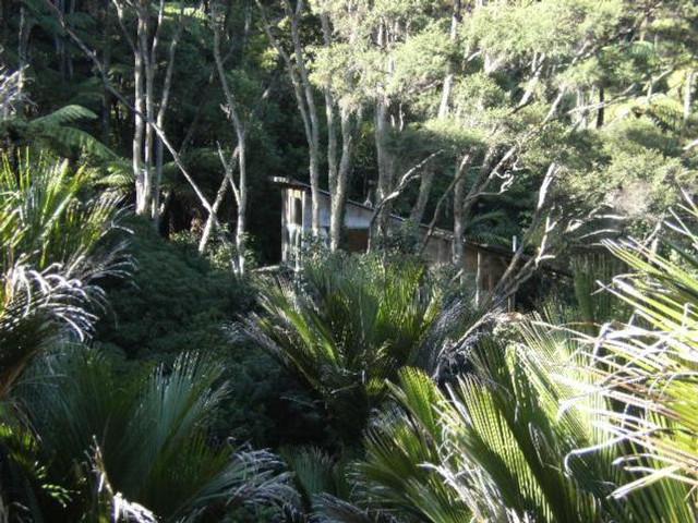 The bush hut: solitude and serenity