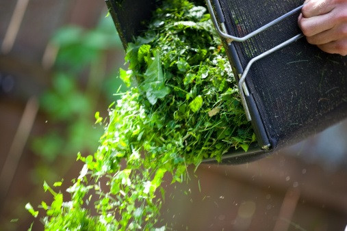 lawnmowing, bagging grass