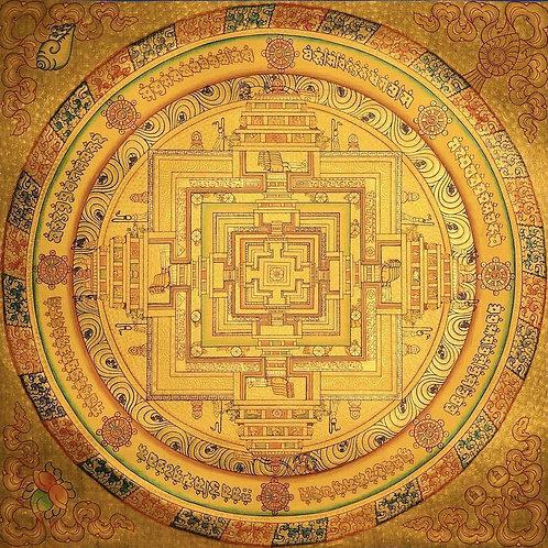 Golden circle of life.