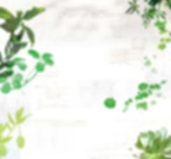 OTIUMグリーンイメージ