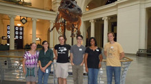 Final Days at the Field Museum
