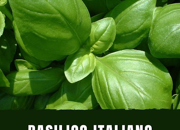 Basilico Italiano
