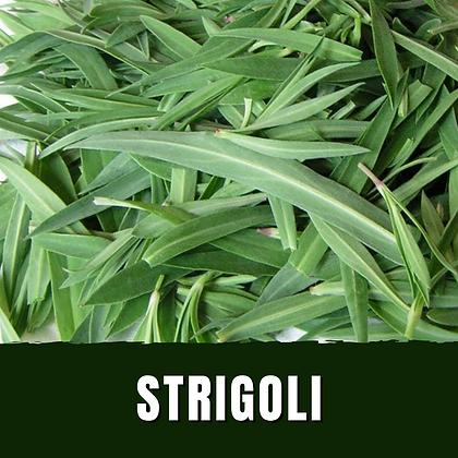Strigoli