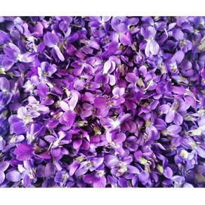 Il profumo della Viola Mammola